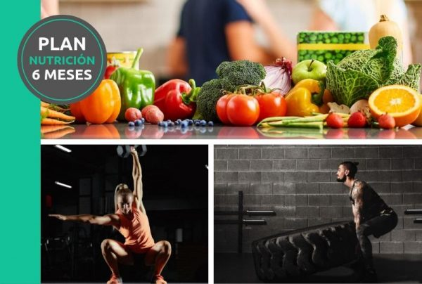 Plan nutricion 6 meses SBEMW